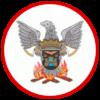 Firebuzz-landing-page-logo-bvcpinhalense