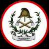 Firebuzz-landing-page-logo-bvtrancoso