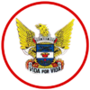 Firebuzz-landing-page-logotipo-bvcondeixa